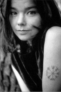 pendentif viking Vegvisir - Björk